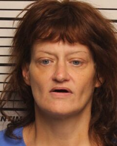 WHITEHEAD, NORMA KAY - PUBLIC INTOXICATION; FTA OR OBEY COURT ORDER