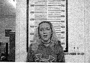 HENDRICKSON, HANNA G - SIMPLE POSS:CASUAL EXCHANGE; UNLAWFUL DRUG PARA; HOLD FOR COURT