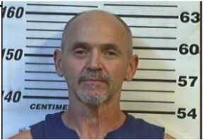 STOKES, JOHNNY EARL - SIMPLE POSS METH; HOLD FOR RHEA COUNTY