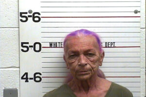 PRESTRIDGE, MARILYN ANN - SERVING 42 HOURS ON PREVIOUS CHARGE