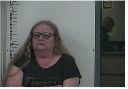 WELCH, SHANNON - DOMESTIC ASSAULT