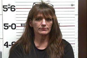 YOUNG, KAROLYN MARIE - VOP AMENDED THEFT; VOP THEFT