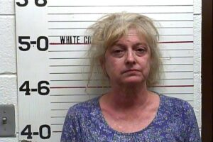 Diana Sawyer - Public Intoxication
