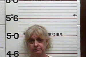 Diana Sawyer - Violation of Probation