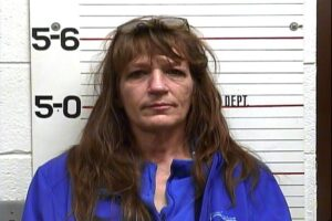 Karolyn Young - Theft of Property - Serving Sentence on Previous Charge