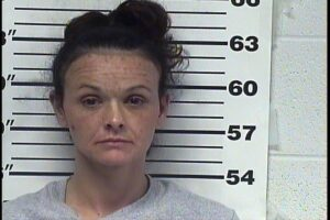 Linda Overstreet - Leaving Scene of Accident - Failure To Give Immediate Notice on Accident