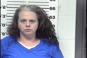 HAWKES, EMILY RUTH -POSS METH; POSS CONT SUBSTANCES X2