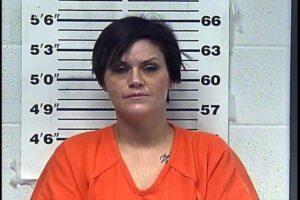 Heather Hartzell - Possession Controlled Substances, Felony Possession of Drug Paraphernalia