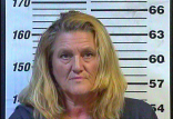 Melissa Nelson - Forgery, Theft of Property, FTA:No DL to Pay