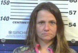 Shelly Shull - Meth - Unlawful Possession Drug Paraphernalia - Theft of Property