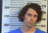 Winston Nelson - MAN, DEL, SELL, or Possession of Meth