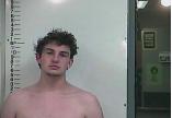 Mason Stout - Violation of Probation:Supplemental