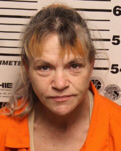 Sherri Shock - Violation of Probation - Possession of Sch III - Drug Paraphernalia - Driving on Revoked License - Simple Possession - Possession of Meth
