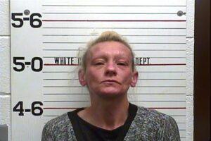 April Neely - Violation of Probation