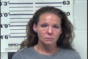 Brandy Goodwin - Public Intoxication, Possession Meth