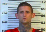 Joshua Rollins - Leaving Scene of Accident, Driving On Revoked:Suspended License