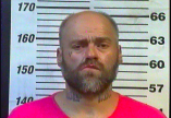 Michael Stottlemire - DUI, Driving on Revoked:Suspended License