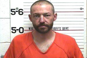 Michael Terrell - Domestic Assault