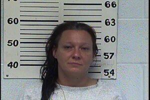 Amy Carlisle - Domestic Assault