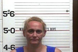 Brandi Whited - Violation of Probation