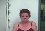 Cristie Howard - Domestic Assault
