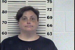 Michelle Tipton - Domestic Assault