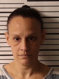 ANDERSON, MELANIE LORRAINE - VOP CRIMINAL X2