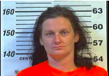 Eileen Norris - DUI, Driving on Revoked:Suspended License, Man:Del:Sell or Possess Meth