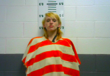 HOLUBEK, JESSICA LYNETTE - THEFT OF PROPERTY OVER $1,000