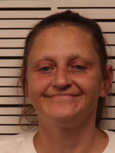 RAY, MICHELE LEE - VOP (CRIMINAL)