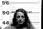 WINNINGHAM, TRISHA LEE - VOP AMENDED SIMPLE POSS ON SCH II AND IV, VOP AMENDED ON DUI